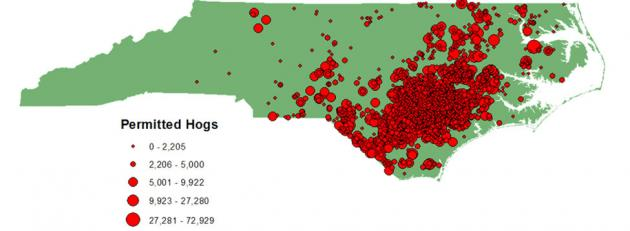 Map of permitted hogs