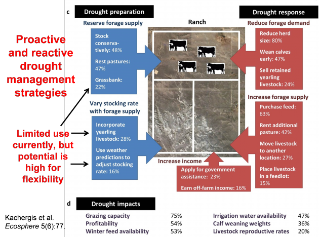 Figure 1.  Proactive and reactive drought management strategies employed by Wyoming ranchers (from Kachergis et al. 2014).