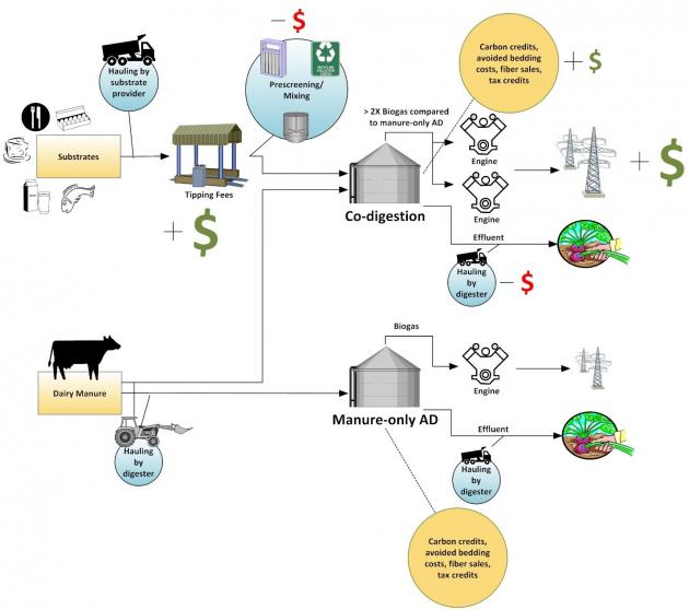 costs and revenue streams for codigestion compared to baseline manure only digestion