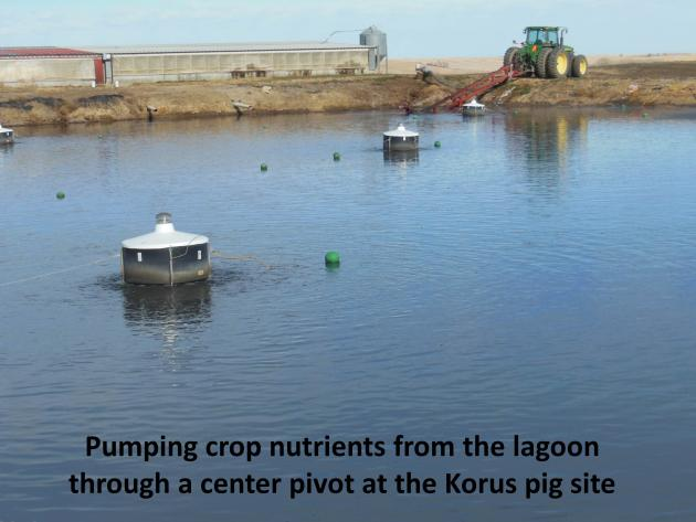 pumping nutrients from lagoon on korus pig site