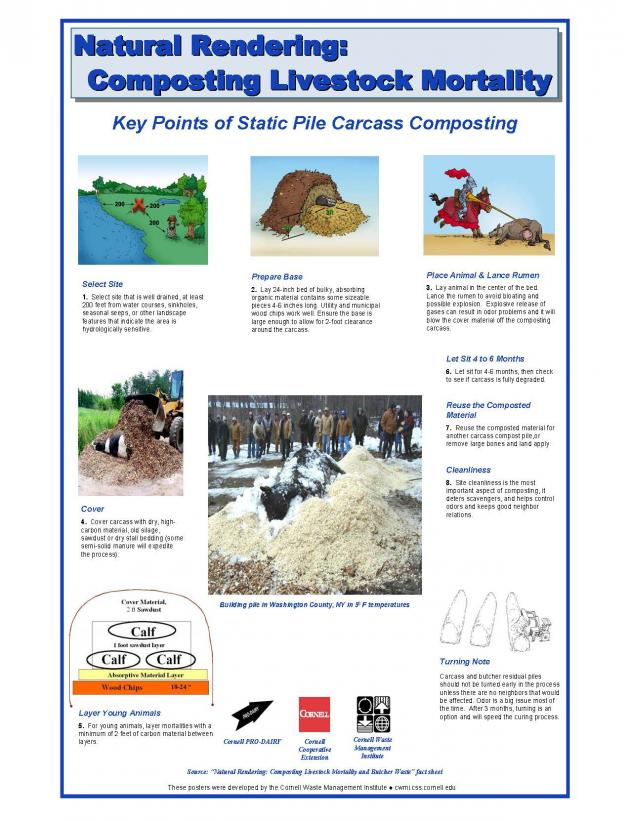 poster of the mortality composting process