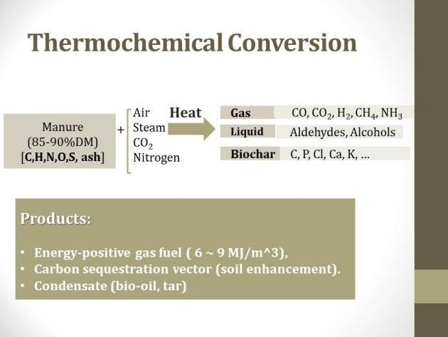 chemical representing thermochemical conversion of manure to energy and other products