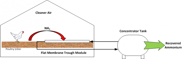 Figure 1. System for the recovery of gaseous ammonia from poultry waste using gas-permeable membrane module.
