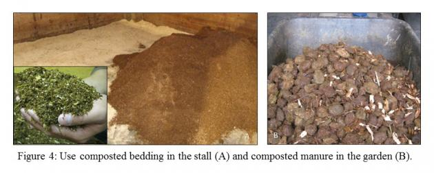 Figure 4. Use composted bedding in the stall and composted manure in the garden.